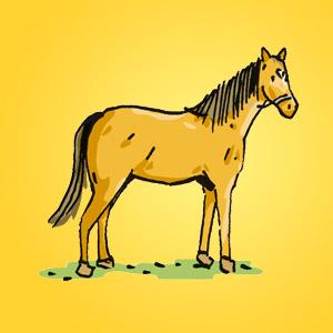 Pferd - Rätsel für Kinder - Rebus