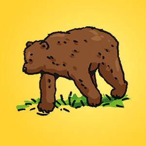 Bär - Rätsel für Kinder - Rebus