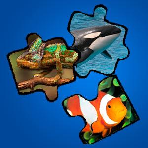 Interaktives Minispiel für Kinder - Puzzle Orca-Frosch-Fisch-Hase-Chamaeleon