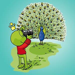 Linus fotografiert einen Pfau - Wissen über Tiere